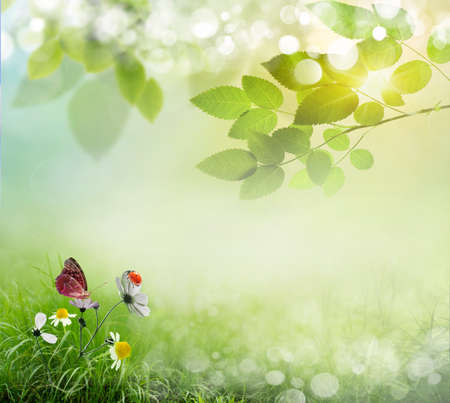 Foto de Spring background with flowers and ladybug - Imagen libre de derechos