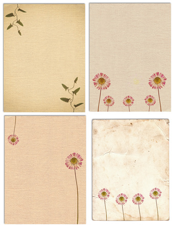 Photo for Set of various Old vintage paper texture with dry plants and flower isolated on the white - Royalty Free Image