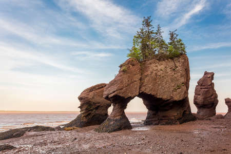 Photo for The icon Hopewell Rocks in New Brunswich. Popular tourist destination, the Bay of Fundy has the highest tides in the world. - Royalty Free Image