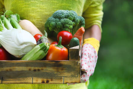 Photo for Woman wearing gloves with fresh vegetables in the box in her hands. Close up - Royalty Free Image
