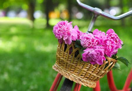Foto de Vintage bicycle with basket with peony flowers in the spring park - Imagen libre de derechos