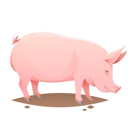 Ilustración de Pink farm pig on white background. Vector Illustration - Imagen libre de derechos
