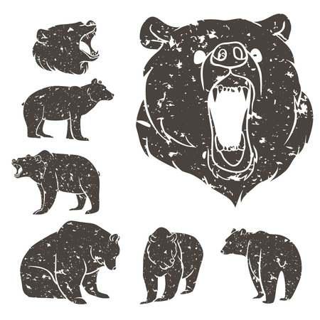 Ilustración de Set of different bears with grunge design. Vector illustration - Imagen libre de derechos