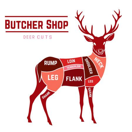 Ilustración de Deer meat cuts with elements and names in color for Butcher shop - Imagen libre de derechos