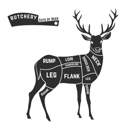 Ilustración de Deer meat cuts with elements and names. Isolated black on white background. Butcher shop. Vector illustration. - Imagen libre de derechos
