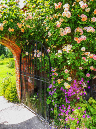 Photo for Lush green english walled garden on a summers day - Royalty Free Image