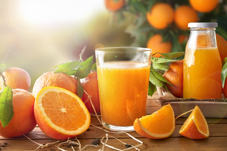 Photo for Glass of orange juice on a wooden table with bottle and orange sections. Tree and field background with evening sun. Horizontal composition. Front view - Royalty Free Image