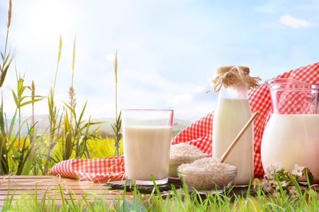 Photo pour Composition with rice drink on wooden base in the field. Alternative milk. Front view. Horizontal composition - image libre de droit