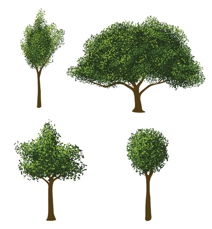 Illustration for Vector Trees Set - Royalty Free Image