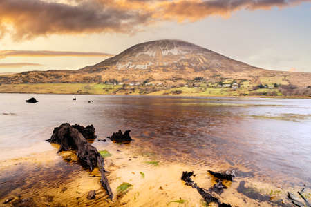 Photo for Twisted tree trunks submerged in Dunlewy lake with view at Errigal mountain in dramatic sunset, County Donegal, Ireland - Royalty Free Image