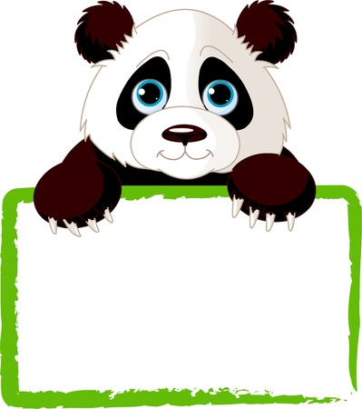 Adorable  Panda Looking Over A Blank Sign