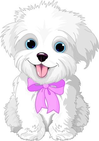 Photo for Cute white lap-dog puppy posing with pink ribbon - Royalty Free Image