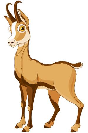 Illustration for Cartoon illustration of Chamois (Rupicapra) - Royalty Free Image