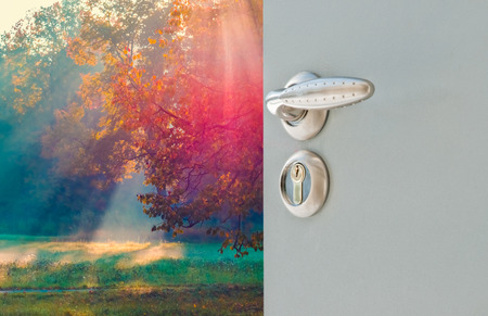 Photo pour Open the door handle and keys conservatory overlooking the forest and the sun - image libre de droit