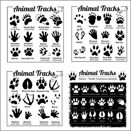 Ilustración de Animal Tracks - North American animals - Imagen libre de derechos