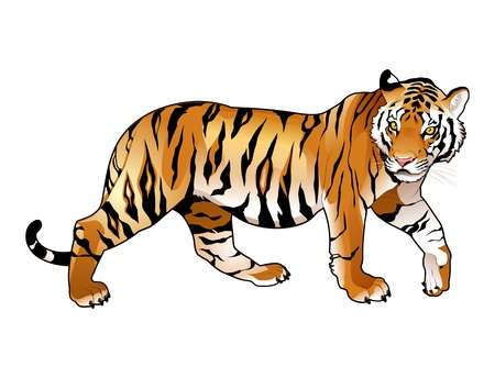 Red tiger. Cartoon and vector isolated animal.