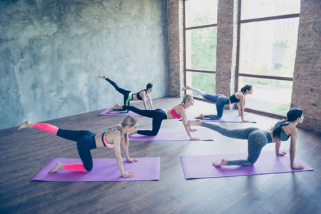 Foto de Great morning. Five young sport women are stretching in modern studio on purple mats. Freedom, calmness, harmony and relax, women happiness concept - Imagen libre de derechos