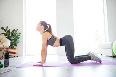Photo for Asana meditation studio people person posture rest relax lifestyle beauty fashion butt concept. Full length size photo of beautiful peaceful calm lady wearing sporty clothes doing exercise for back - Royalty Free Image