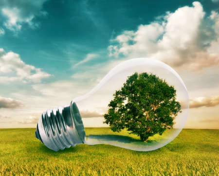 Photo pour Light bulb with a tree growing inside in green field. Environment, eco technology and energy concept. - image libre de droit