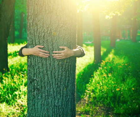 Foto de Hands hugging a trunk of a tree in summer park or forest with sunlight. Ecology, loving nature concept - Imagen libre de derechos