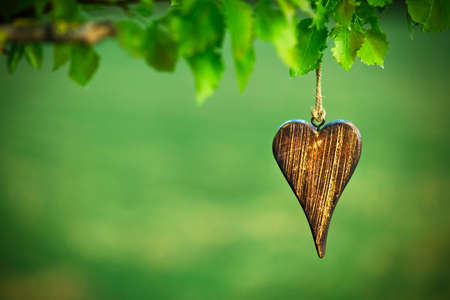 Photo for wooden shape of heart on natural green background with copy space - Royalty Free Image