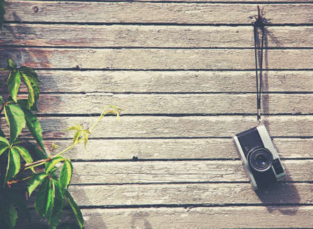 Foto per Retro vintage camera hanging on wooden natural boards with green plant. Copy space - Immagine Royalty Free