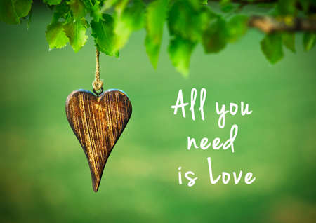 Foto de All you need is love - inspirational quote on natural green background with wooden shape of heart. - Imagen libre de derechos