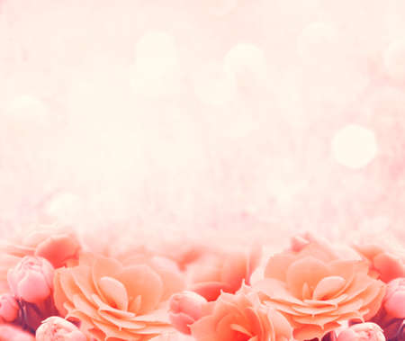 Photo for spring pink flower background - Royalty Free Image