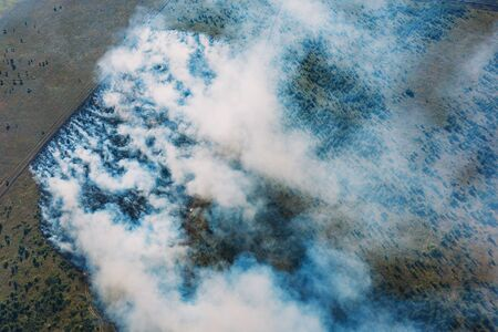 Photo for Wildfire in green fields from hot weather, aerial view, natural disaster accident, burning forest and huge clouds of smoke. - Royalty Free Image