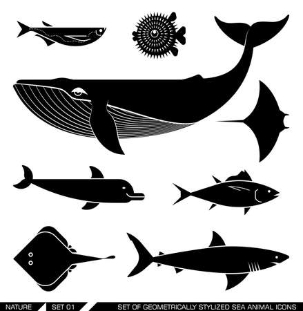 Illustration for Set of various sea animal icons: whale, tuna, dolphin, shark, fish, rajiforme. Vector illustration. - Royalty Free Image