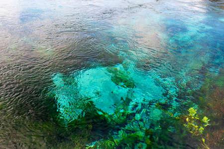 Foto de Beautiful nature at The Waikoropup? Springs, Takaka, Abel Tasman, New Zealand. - Imagen libre de derechos