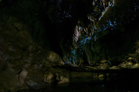 Photo for Amazing New Zealand Tourist attraction glowworm luminous worms in caves. High ISO Photo.. - Royalty Free Image