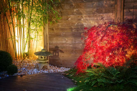 Photo pour Japanese stone lantern and red maple tree in a zen garden lightened by spot lights at night - image libre de droit