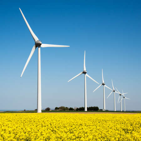 Photo for Wind turbine in a yellow flower field of rapeseed - Royalty Free Image