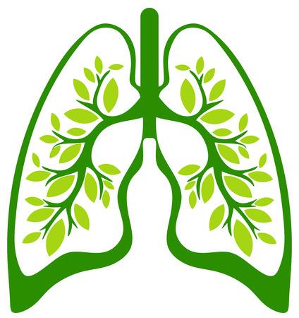 Photo pour the green lungs - image libre de droit