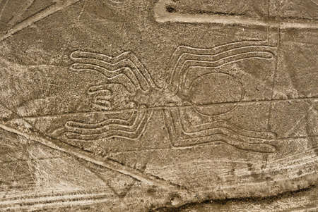 Photo for Nazca Lines Spider as viewed from a plane, Nazca, Peru. - Royalty Free Image