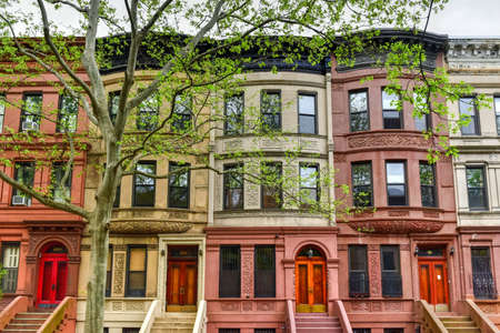 Photo for Brownstones in the Harlem Neighborhood of New York City. - Royalty Free Image