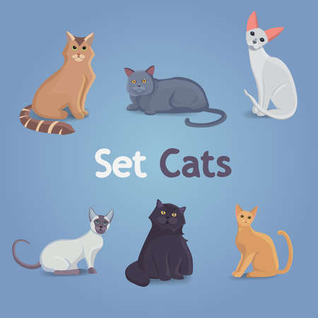 Collection of Cats and Dogs of Different Breeds. Vector Illustration Set.
