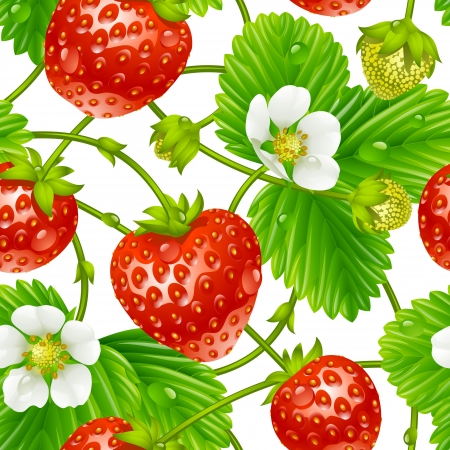 Illustration pour Vector strawberry seamless pattern isolated on white background - image libre de droit