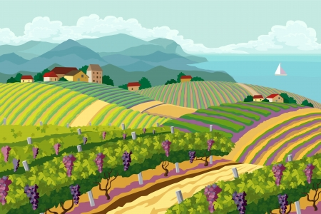 Illustration pour Rural landscape with vineyard and mountain and sea panoram - image libre de droit