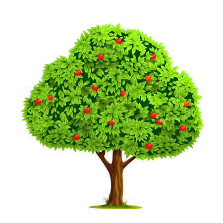 Ilustración de Apple tree with red apple isolated on white background. Vector illustration - Imagen libre de derechos