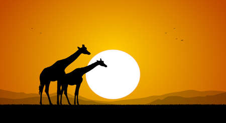 Illustration pour Two Giraffe against the setting sun and hills. Silhouette - image libre de droit