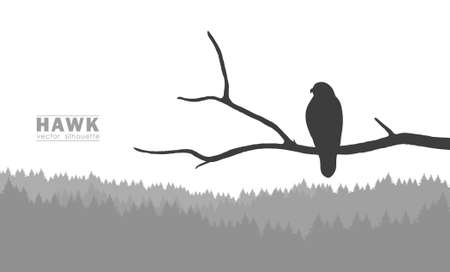 Illustration pour Vector illustration: Silhouette of Buzzard sitting on a dry branch in a forest - image libre de droit