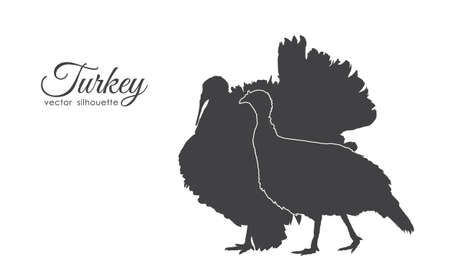 Illustrazione per Vector illustration: Silhouette of couple turkeys isolated on white background. - Immagini Royalty Free