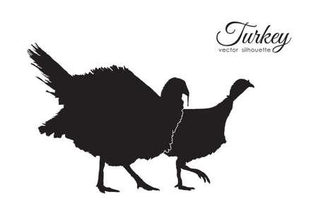Illustration pour Vector illustration: Silhouette of couple turkeys on white background. - image libre de droit