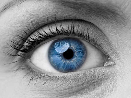 Photo for Beautiful blue woman single eye close up, black and white - Royalty Free Image