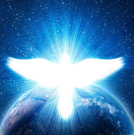Photo for blue earth in space with flying dove - Royalty Free Image