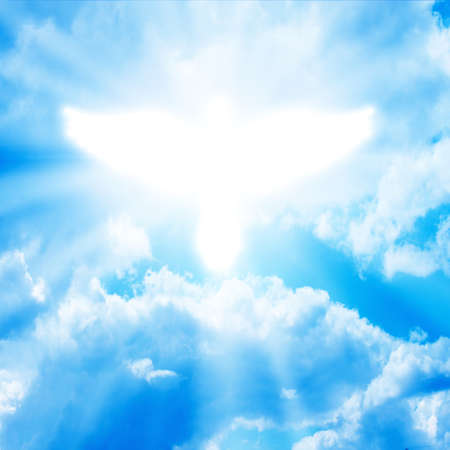 Photo for glowing dove in a blue sky - Royalty Free Image