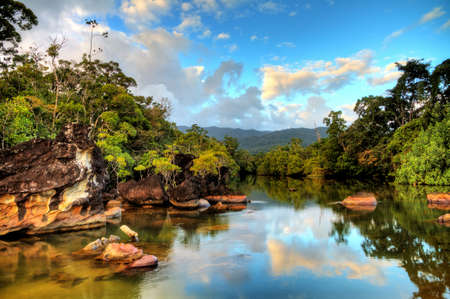 Photo pour Beautiful view of the tropical jungle river at the beach of Masoala National Park in Madagascar - image libre de droit