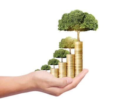 Foto de Concept of money tree growing from coins  - Imagen libre de derechos